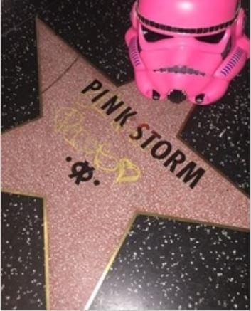 Pink Stormtrooper 8